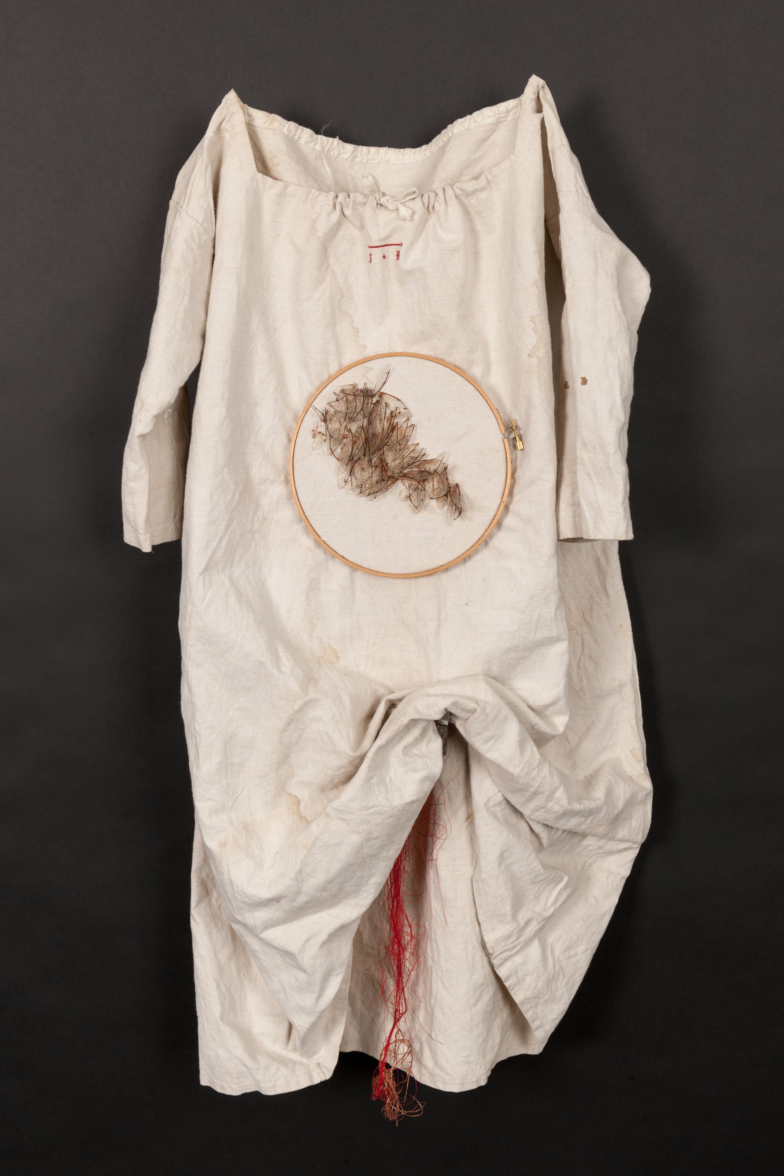 Rapacious Deeds - Linen, red thread, locust wings, wood frame, dimensions 85cm x 69cm, 2017 Image-Nu Image.jpg