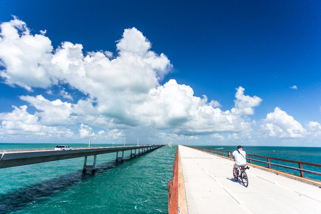 Old Seven Mile Bridge - by Laurence Norah