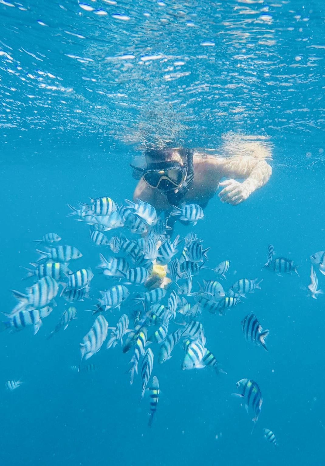 Buhay Isla snorkeling.jpg
