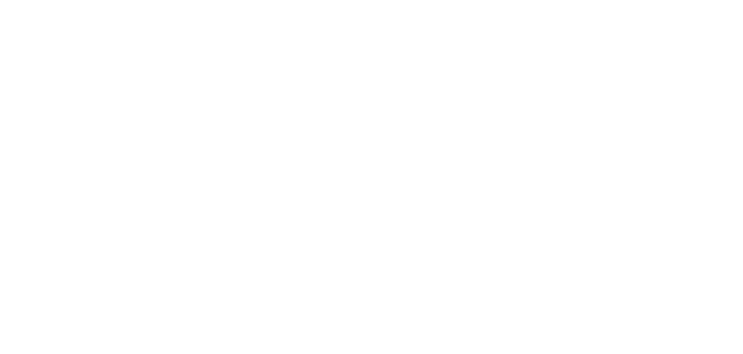 Wave White Logo.png