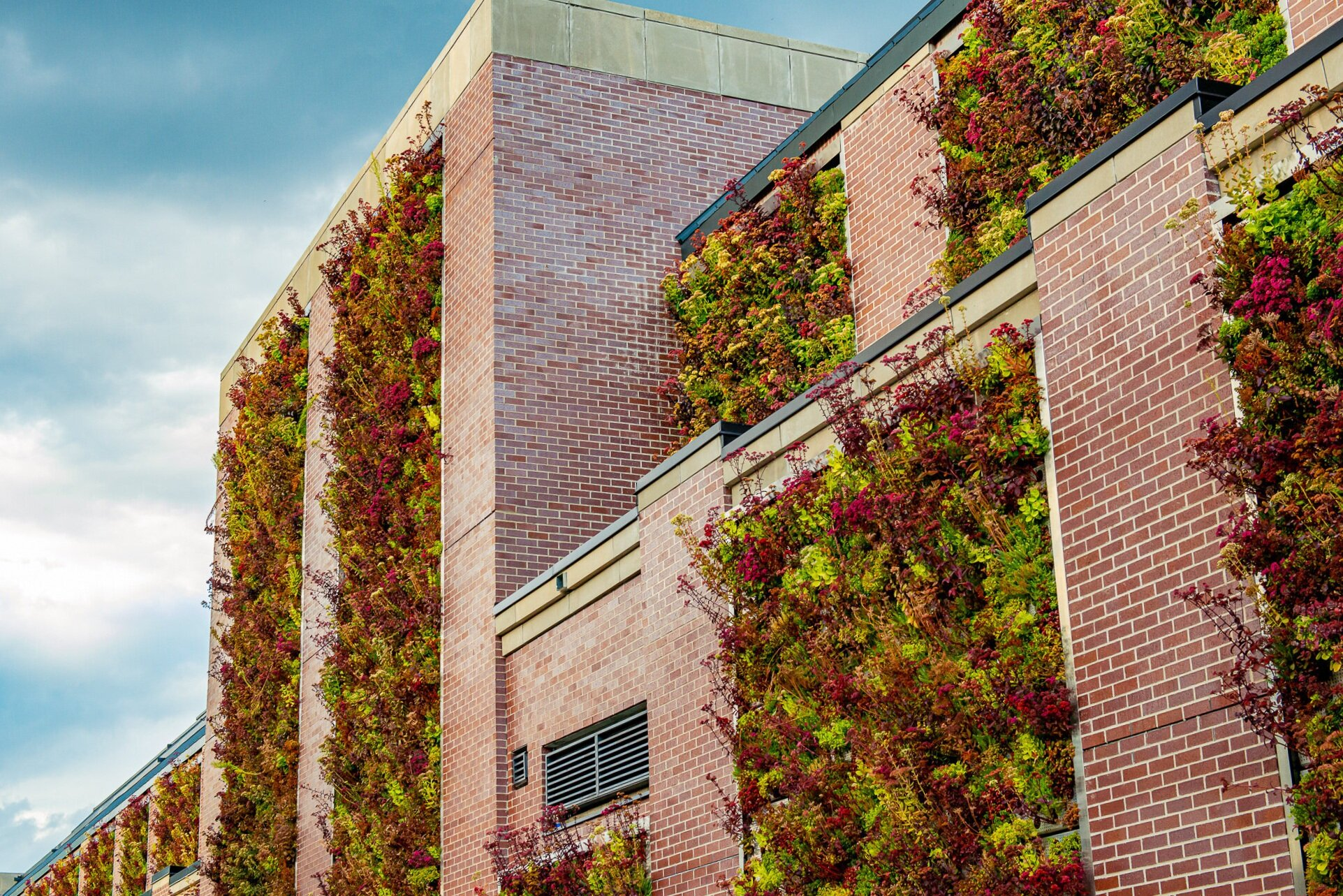 Exterior Walls - Living Walls are a great way to add natural insulation to your building, while also decreasing your carbon footprint and increasing pedestrian traffic to retail spaces.