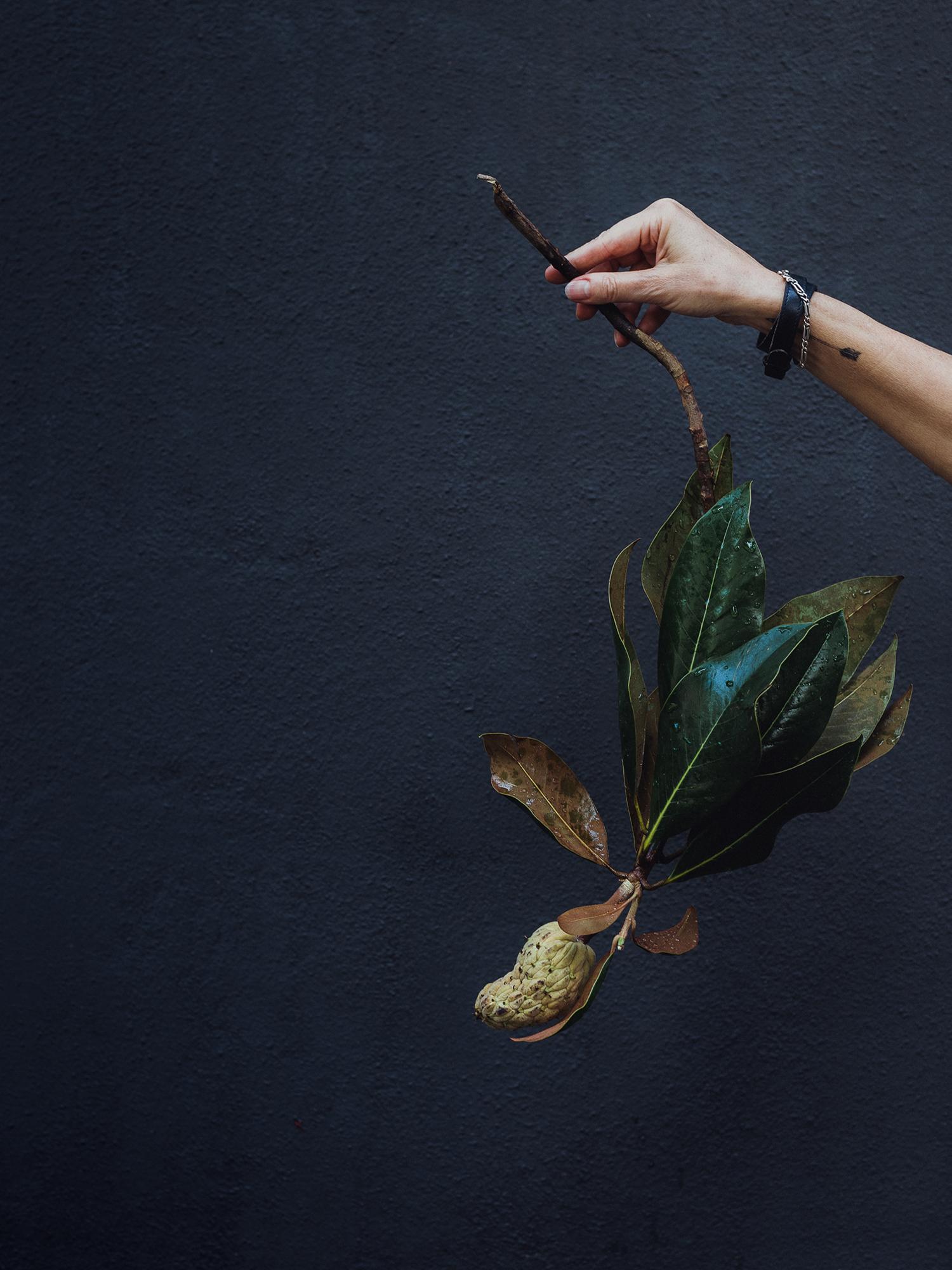radostinaboseva_hand_with_magnolia.jpg