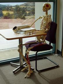 skeletonstudying.jpg