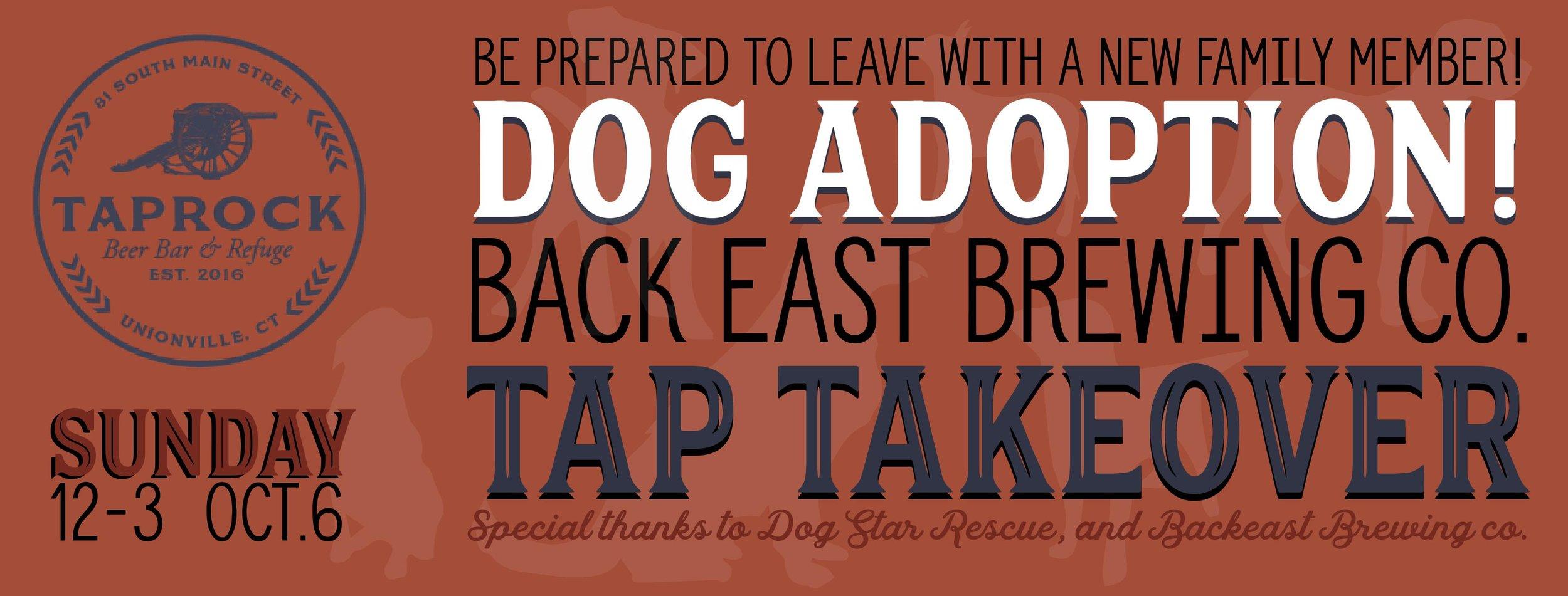 dog adoption banner.jpg
