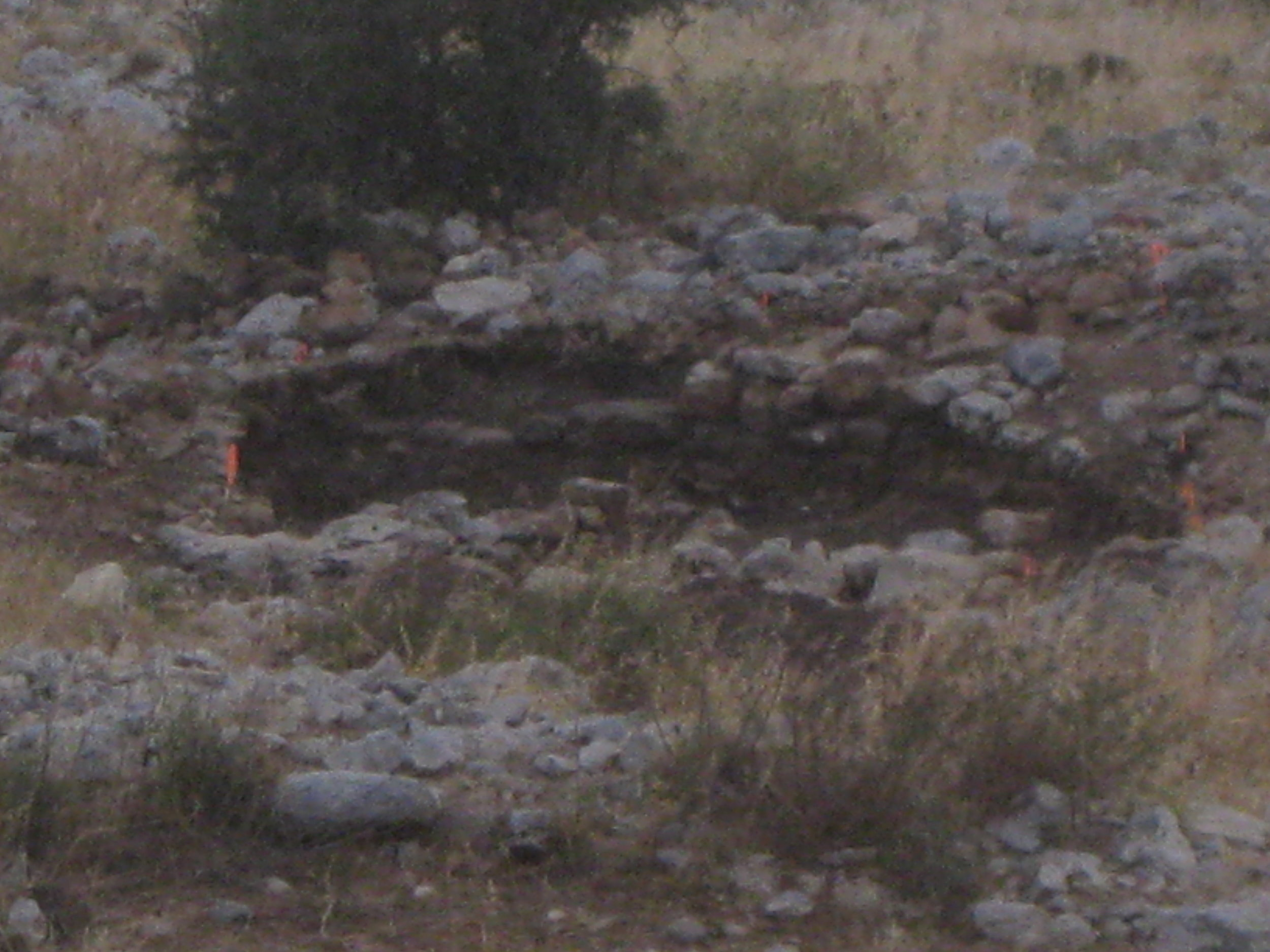"""Our team dug in this square near the Gate of Ai that pointed to the North—digging carefully as if """"draining a bathtub."""" We laughed when some stones pitched over our 10m boundary then had to be moved again when we needed to follow a wall that disected our boundary."""
