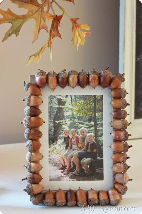 acorn-frame.jpg