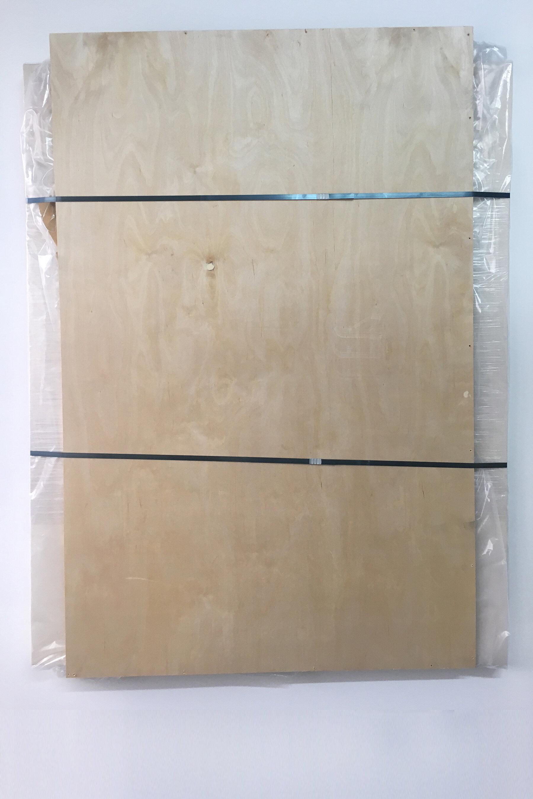 Preserved Paint [10 mL Yellow Ochre, 10 mL Naples Yellow Deep, 10 mL Permanent Red Violet, 10 mL Permanent Red Violet Light, 25 mL Mars Black, 25 mL Titanium White, 40 mL Vermillion, 40 mL Cadmium Yellow Medium, 75 mL Permanent Green Deep, 75 mL Cadmium Red Medium, 100 mL Ultramarine] , 2017, acrylic on canvas over panel, plastic wrap, glass, plastic sheeting, packing tape, wood, steel banding straps, 63 x 48 inches.