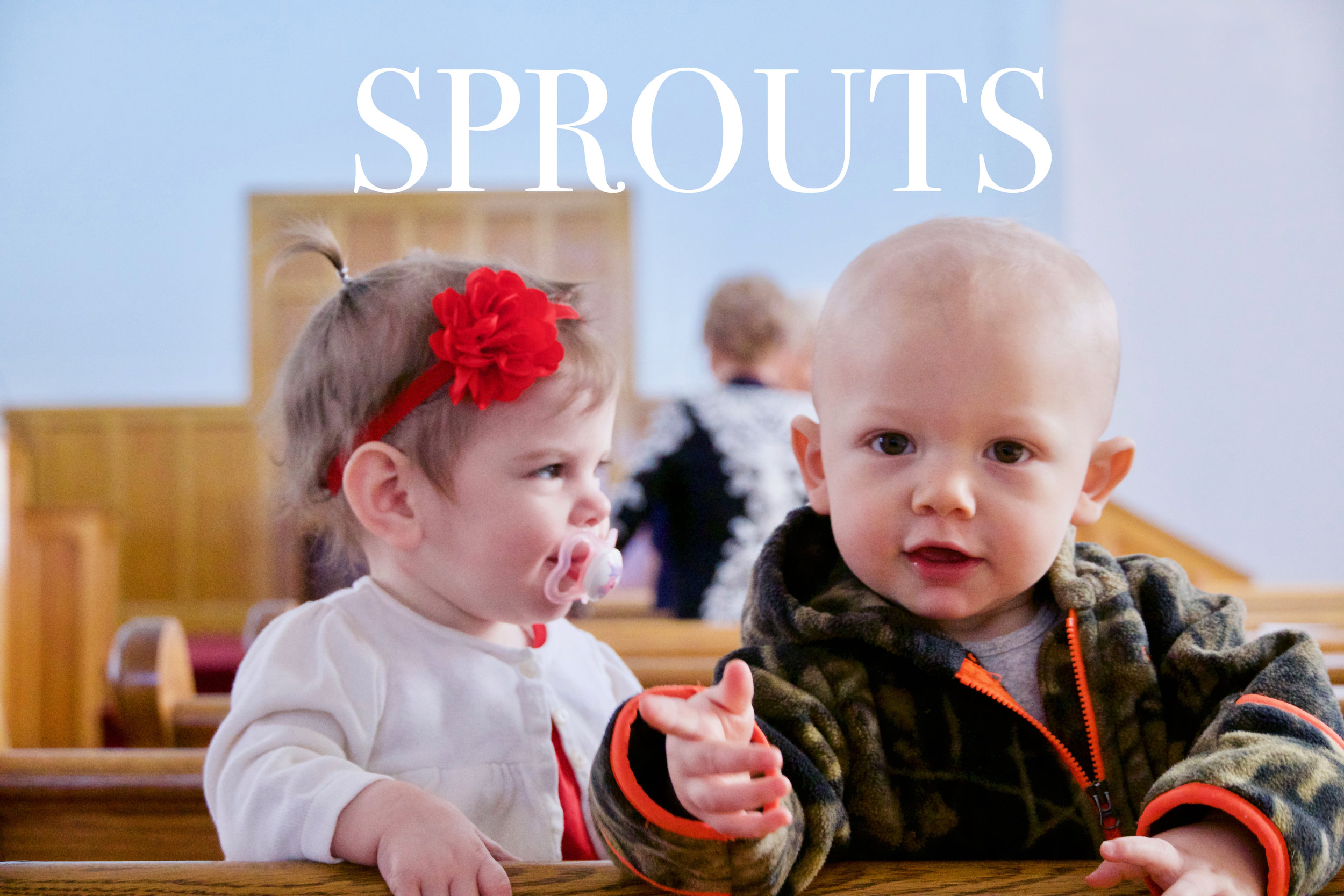 sprouts_front.jpg