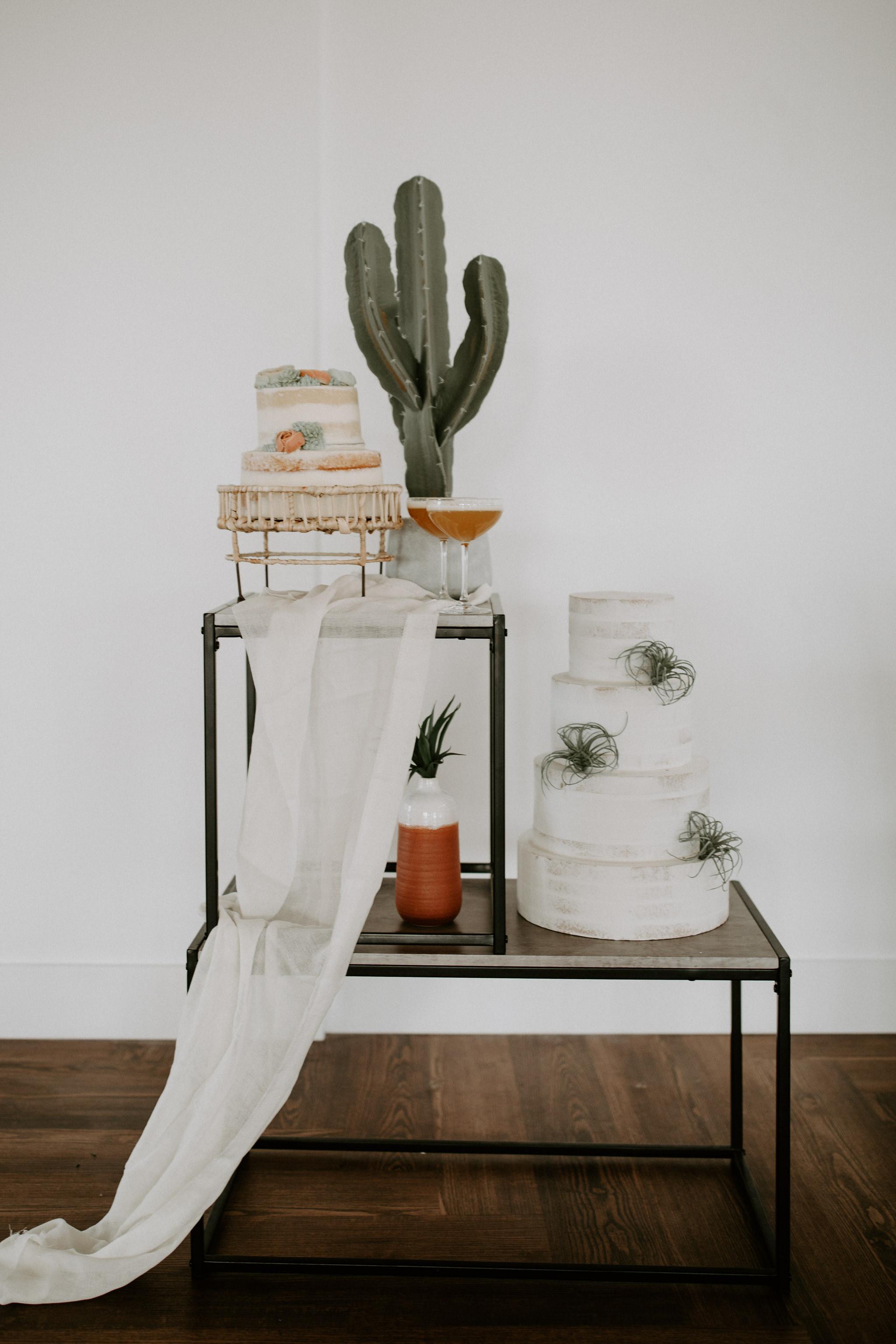 Modern cake with cactus