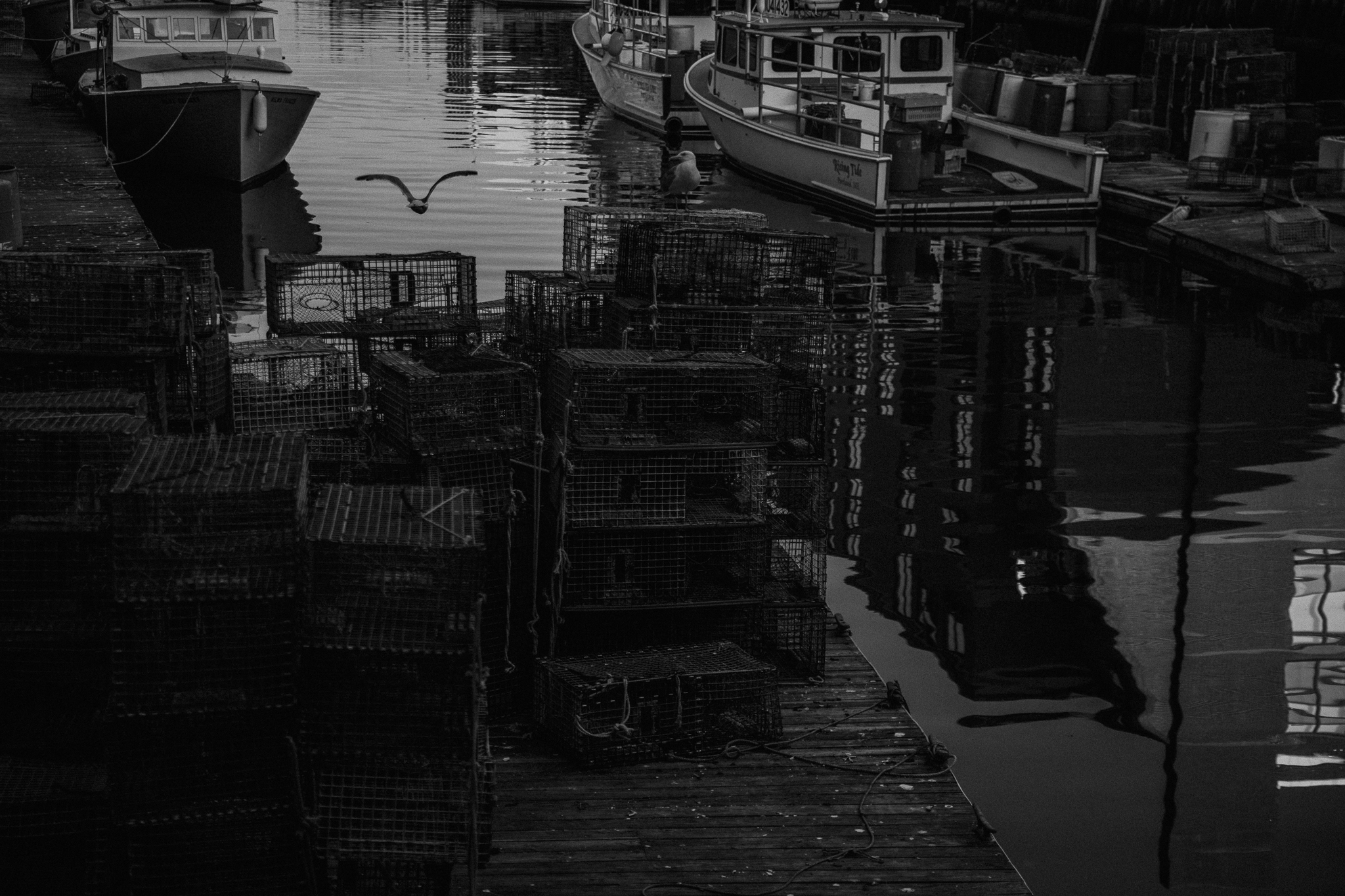 Portland, Maine by photographer, Allie Chambers