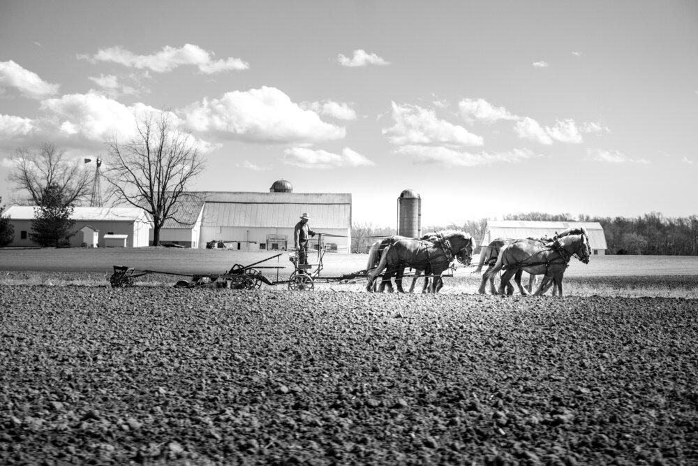 Farmer, Delaware-DSC06227.jpg