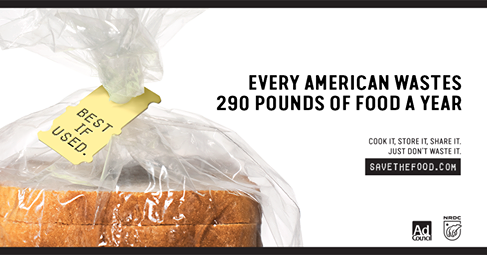 According to the Natural Resources Defense Council's Save the Food Program, 40% of food is wasted in America. You can help reduce food waste by using your senses rather than expirations dates as guideline for the freshness of the food.