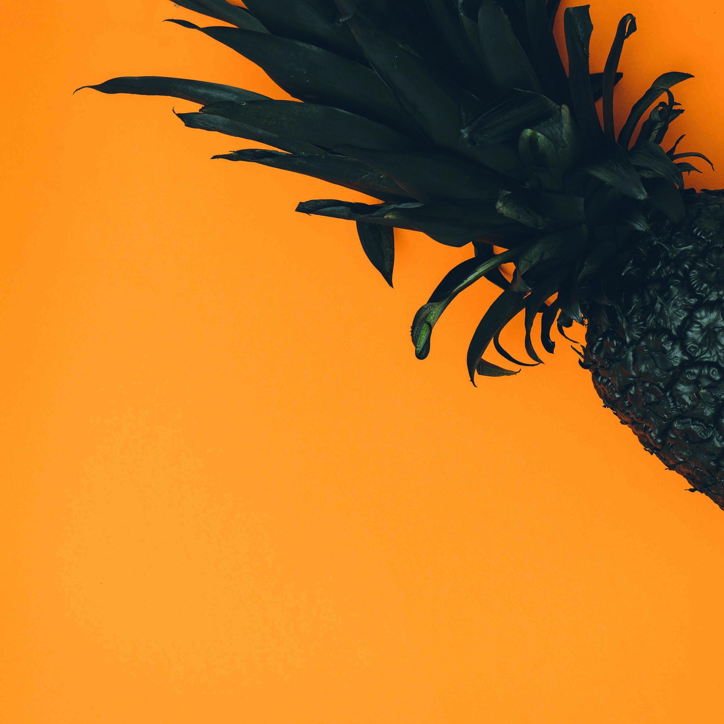pineapple-supply-co-FivolqHz3bg-unsplash.jpg