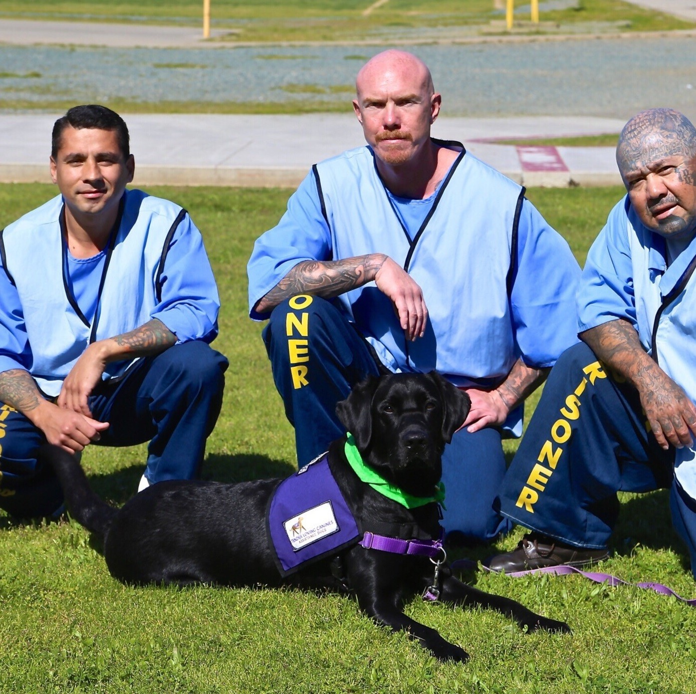 San Diego organization works with inmates to train service dogs