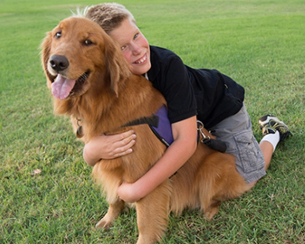 Service dogs for individuals with autism, wounded warriors, and facilities providing services to those populations.