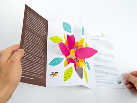 flower-brochure.jpg