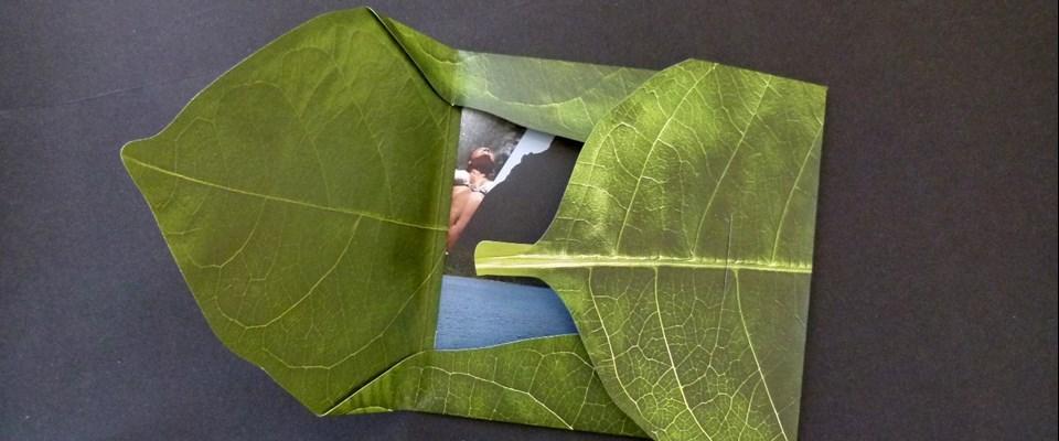 presentation folder die cut and folded to resemble a Leaf