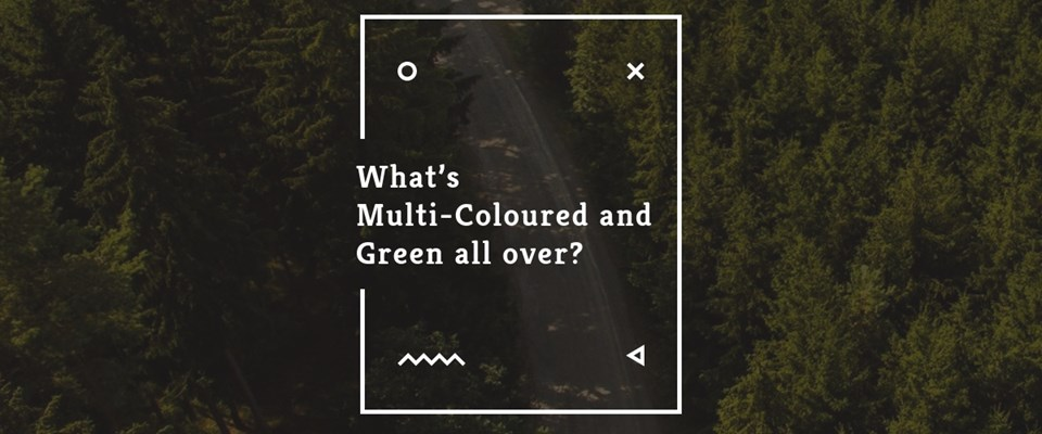 what-s-multi-coloured-and-green-all-over.jpeg