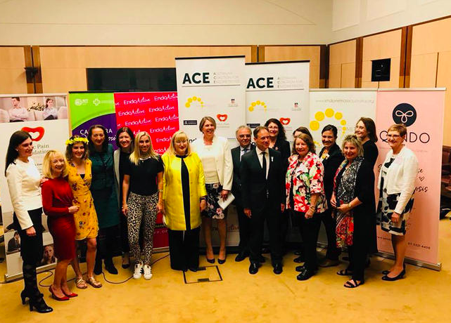 ACE meeting in Canberra