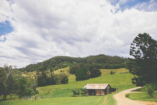 the-farm.jpg