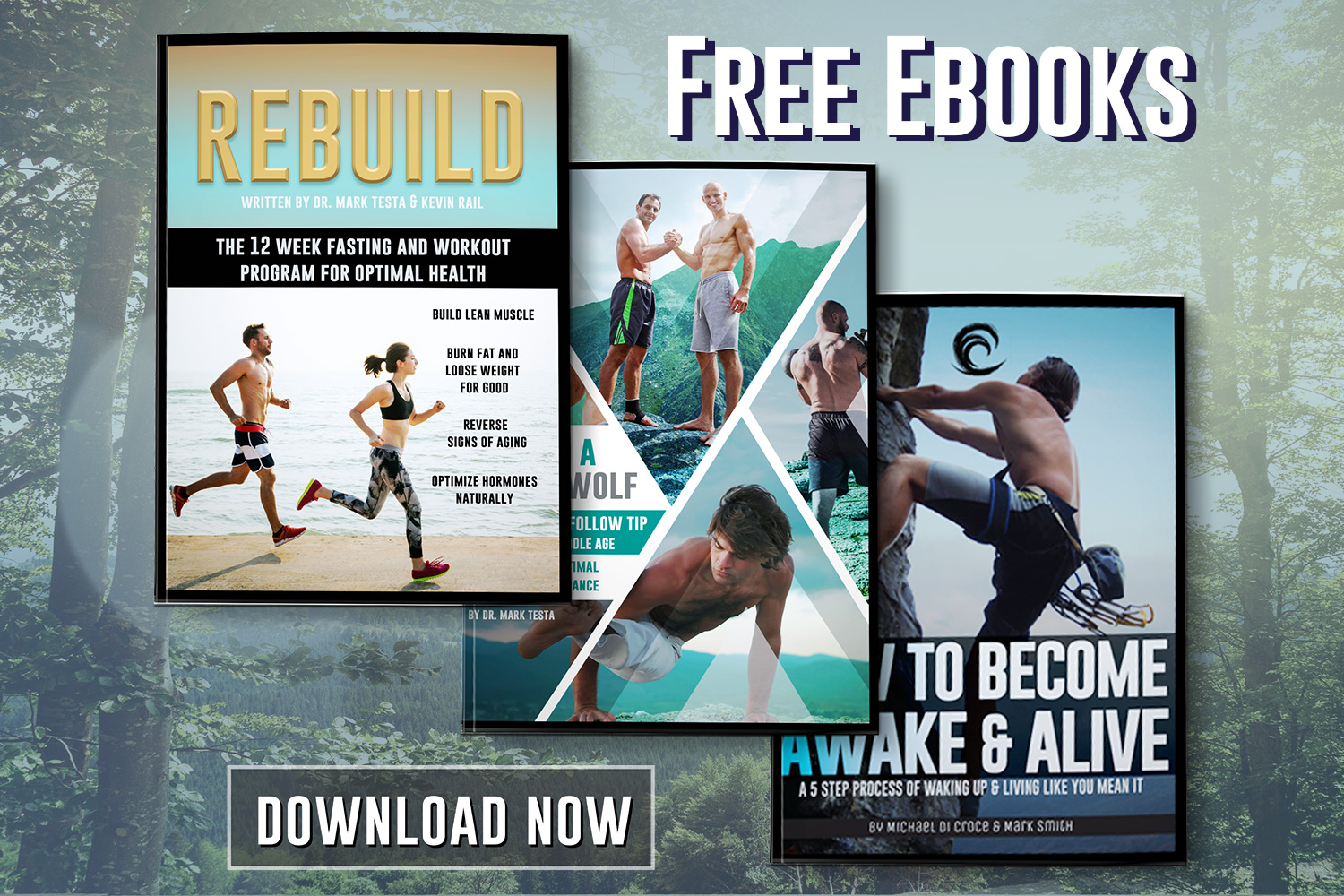 FREE HEALTH AND FITNESS GUIDES FOR MEN OVER 40