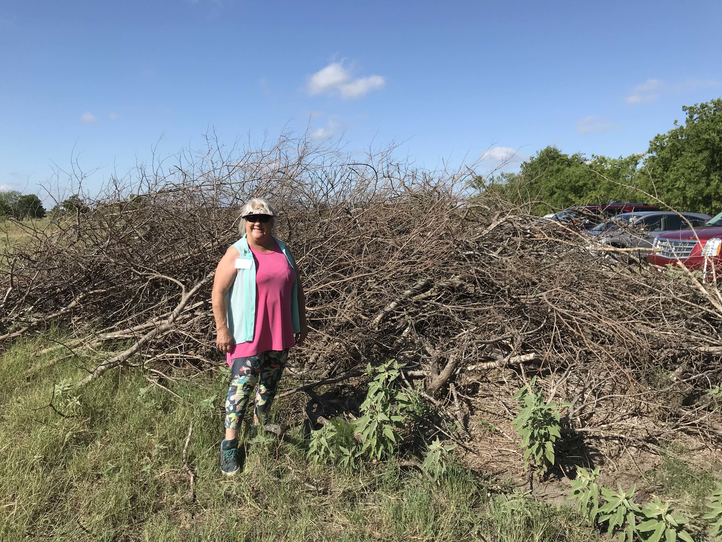 A garden club member was impressed by our intentional brush piles for wildlife habitat, because everyone loves a home for bunnies! (photo by Heather White)