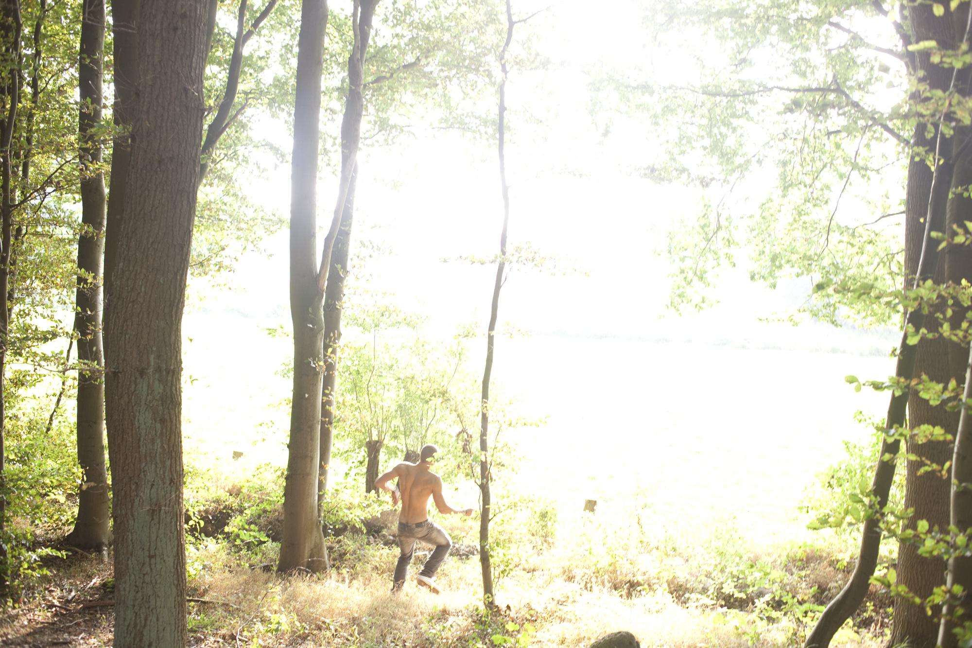 Daniel_van_Flymen_FOREST_002.jpg