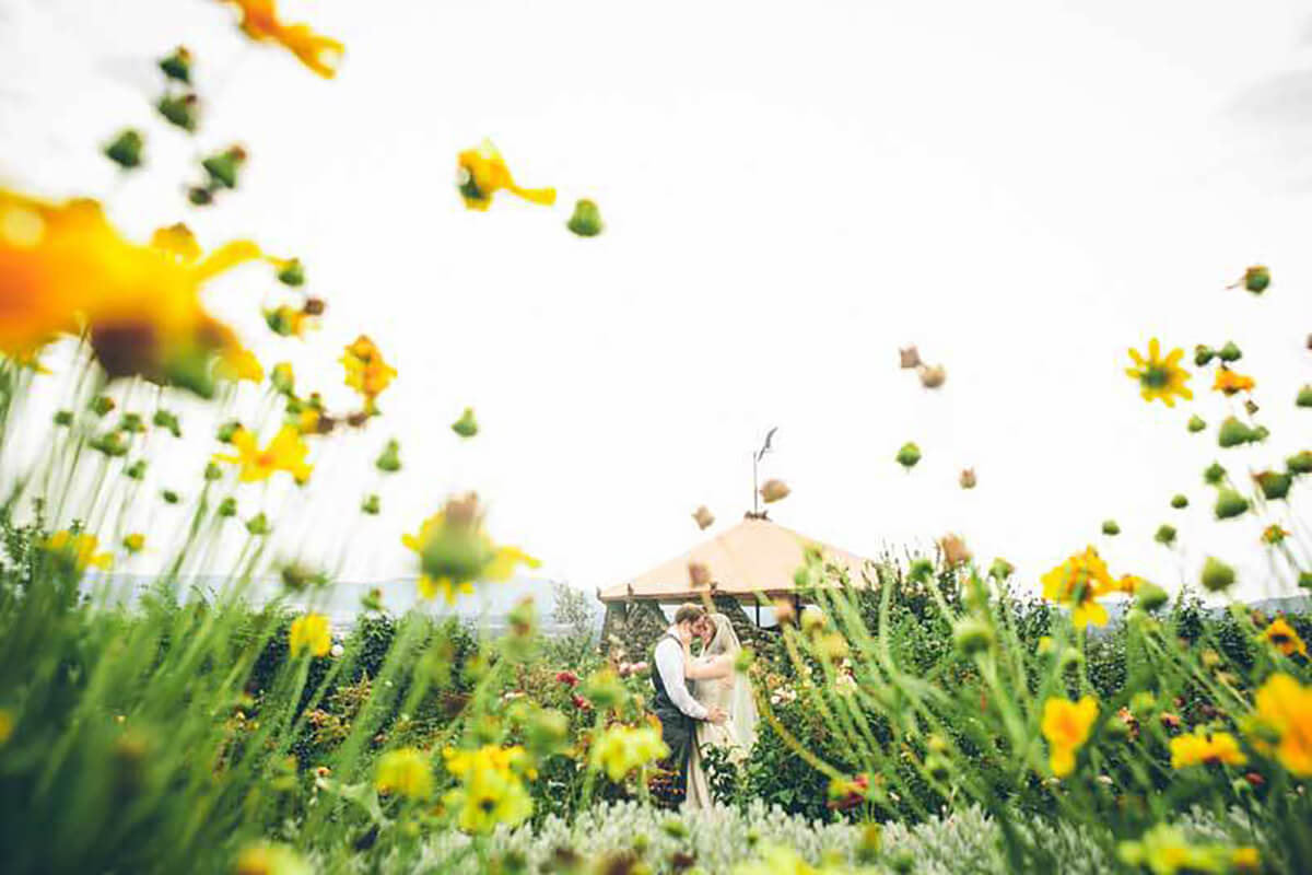 A photo of a bride and groom kissing, framed by beautiful yellow flowers