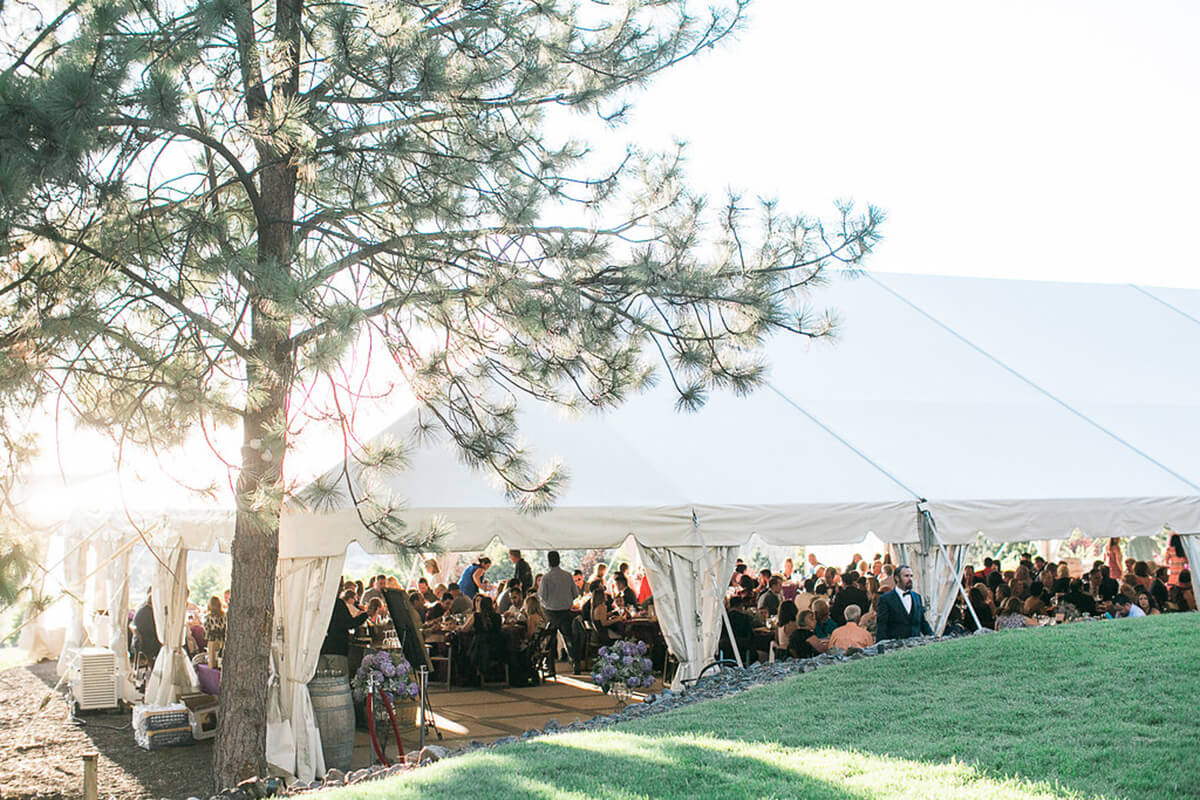 an external photo of the wedding tent, a group of people can be seen within and a tree frames the photo on the left side