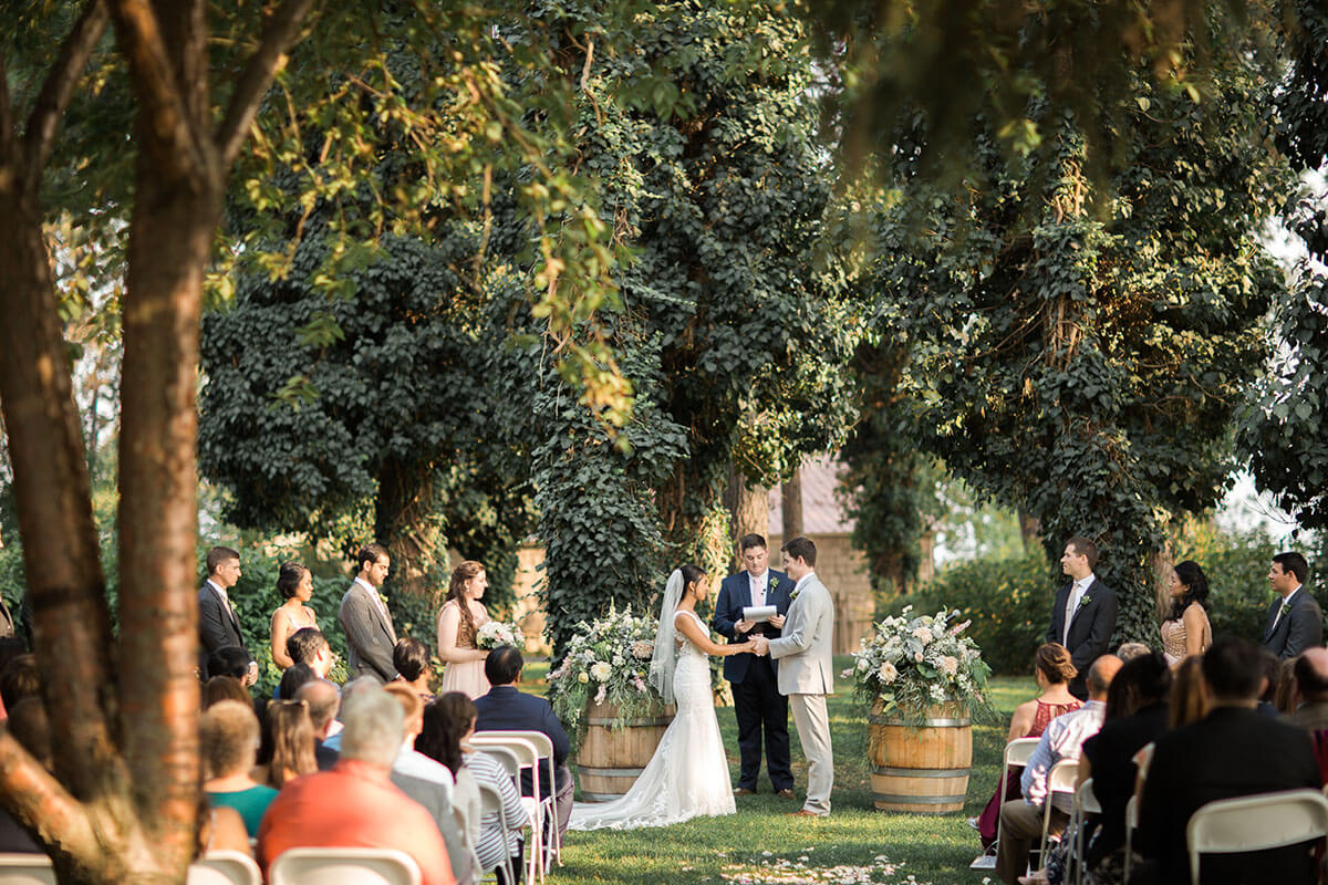 A photo of a couple at their wedding with trees framing the ceremony