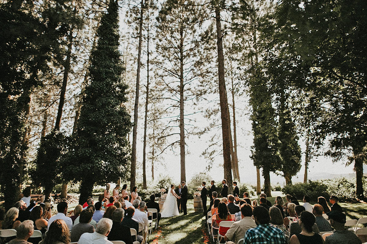 A photo of a wedding ceremony with the top 3/4ths of the photo dominated by tall pine trees