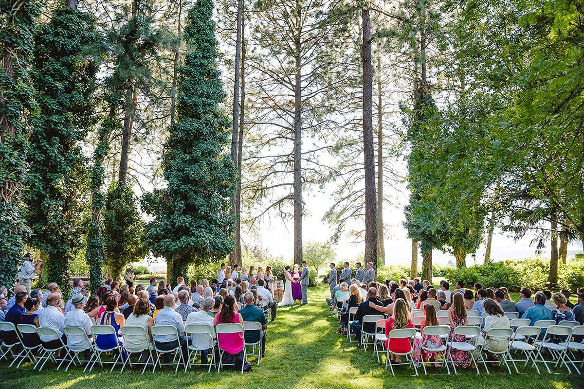A photo of a couple at their wedding with tall pine trees surrounding the ceremony