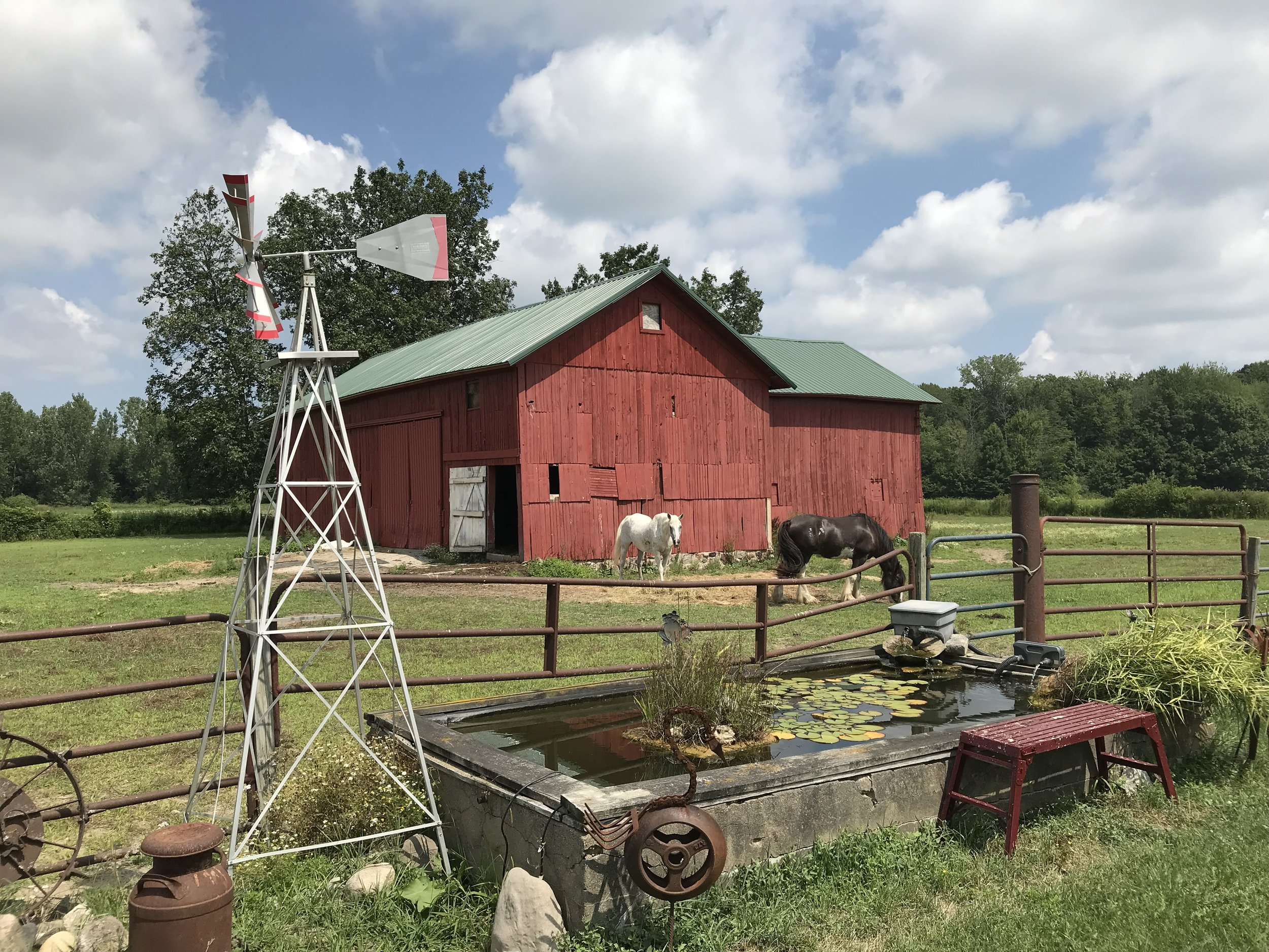 Click here for a little farm history! -