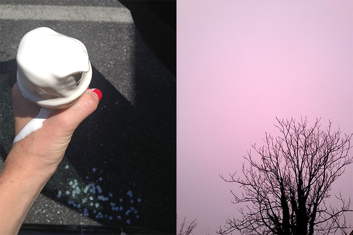 icecream_pinktree copy.jpg