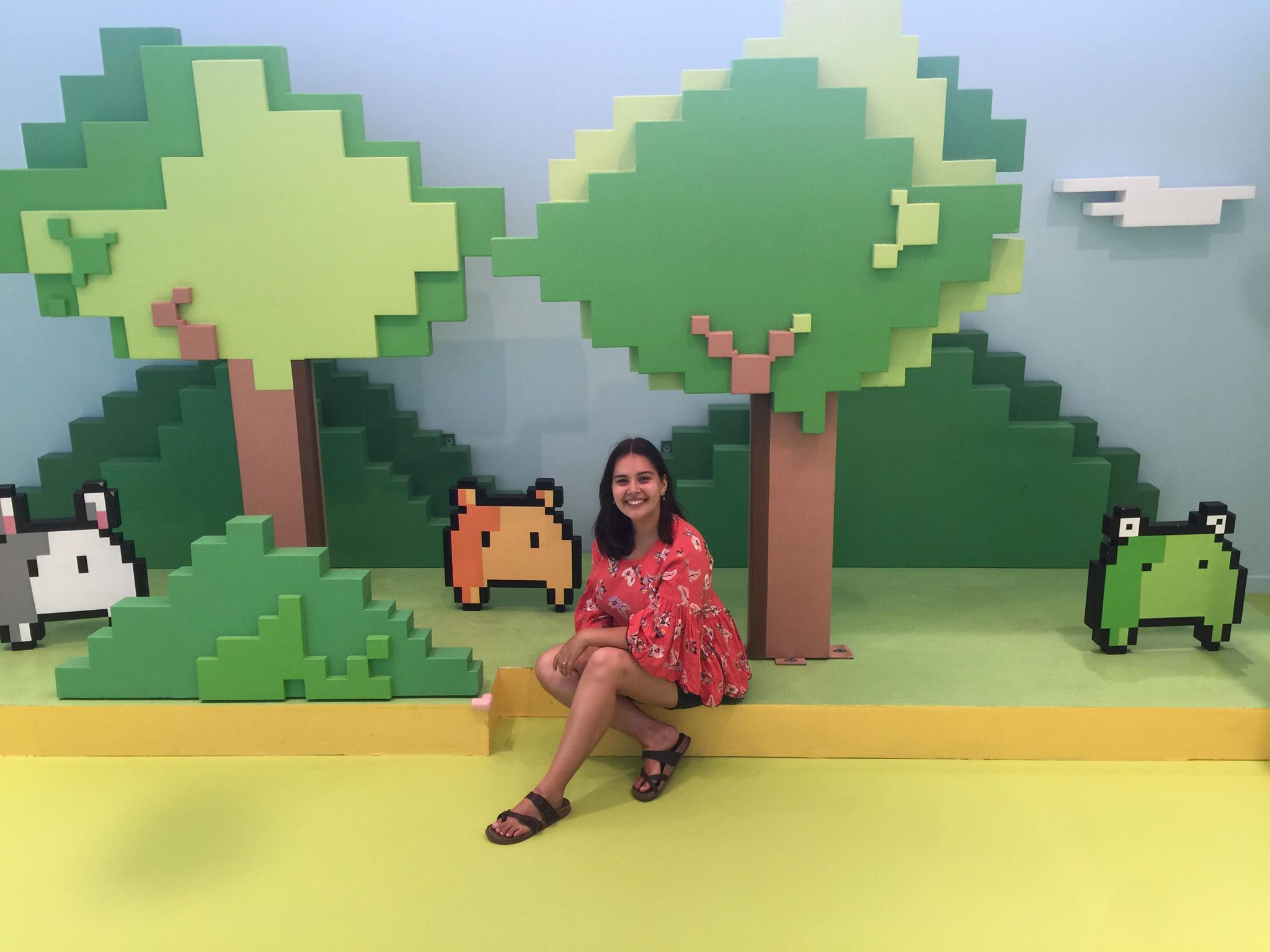 """On August 31st, 2019, Alix voyaged to the  Pixinity Pop Up  exhibition in NYC. The exhibition was a meditation on how electronics help us communicate, but for Alix, the 8-bit art represented how people removed from """"wild"""" spaces relate to these """"wilds"""" from the comfort of urban settings (such as behind computer screens). Check out artist Tianyu Qiu's website  here ."""