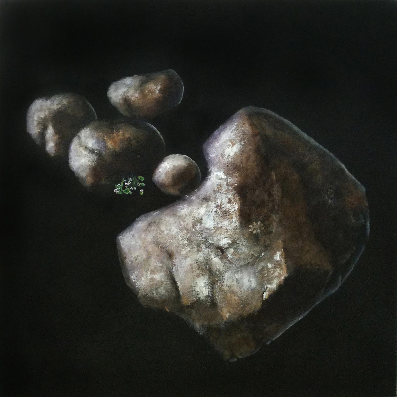 Essentially permissive, the artist imagines glacial erratics in Gordon Ford's rockery , 2011, oil on linen, 97 x 97cm