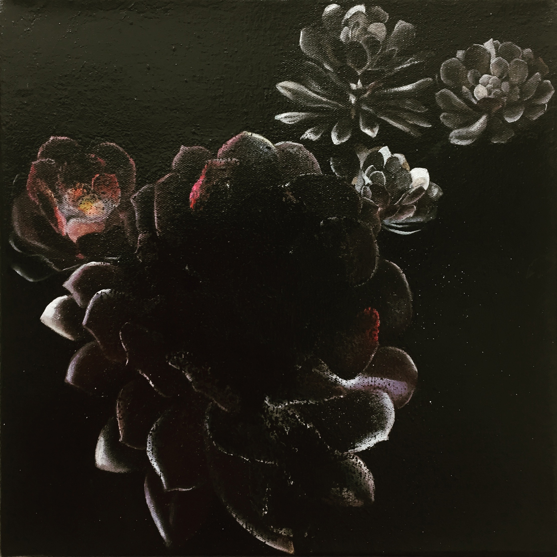 Aeonium (dark dreams manifest) , 2013, oil on canvas, 20 x 20 cm