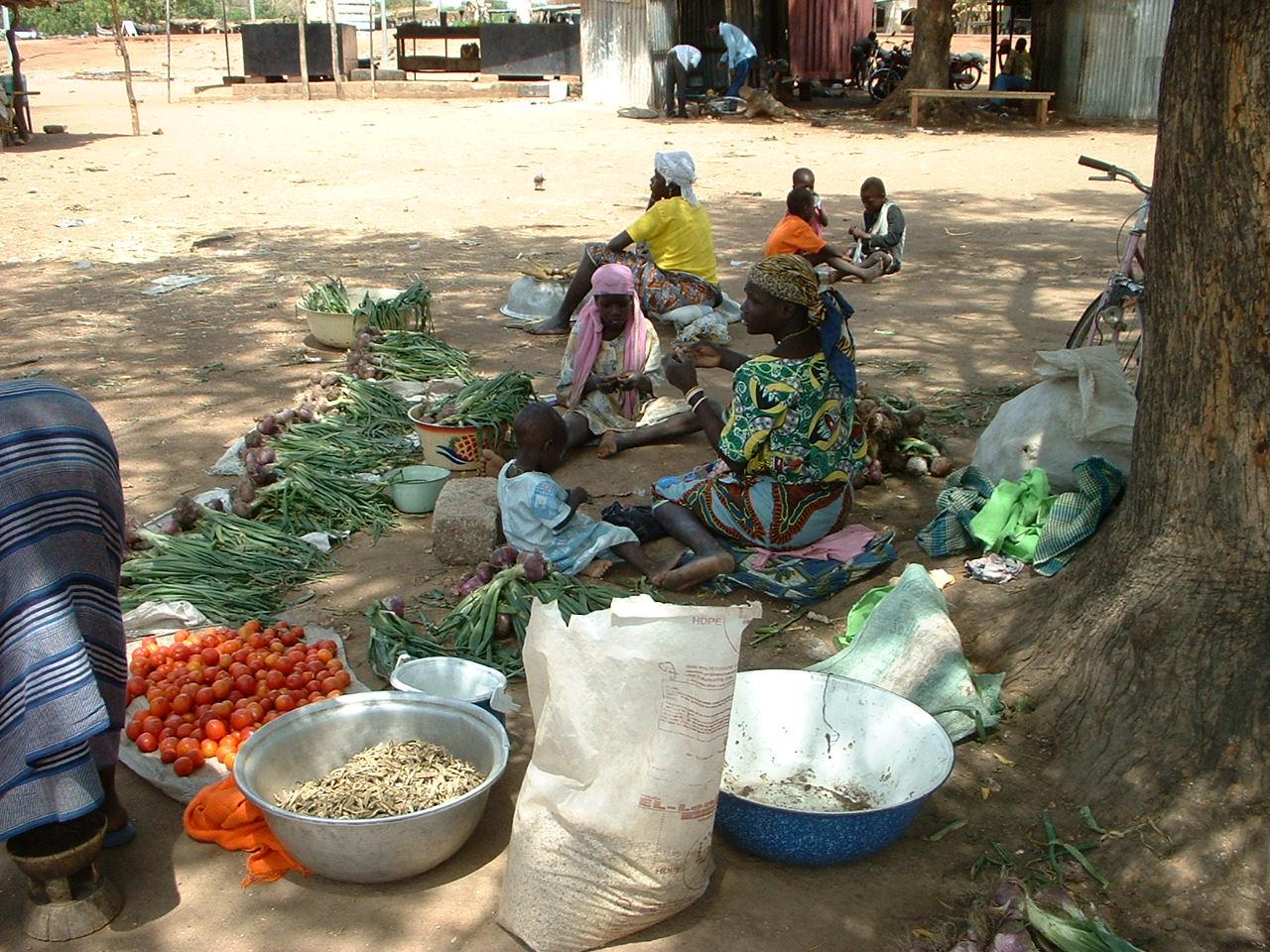 Burkina Faso 1 028.jpg