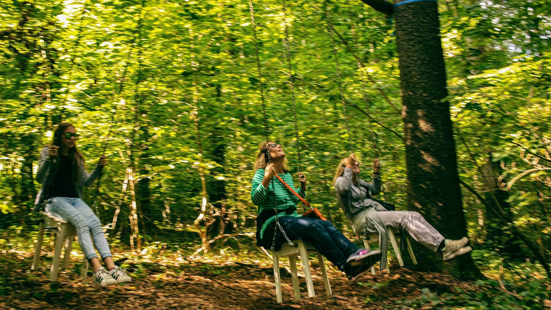 Die Kulturstiftung bietet ein Naturerlebnis für alle Sinne. - Spannender Artikel im Oltner Tagblatt.