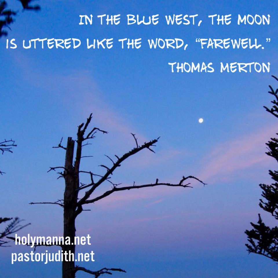 Blue Moon in the West meme.jpg