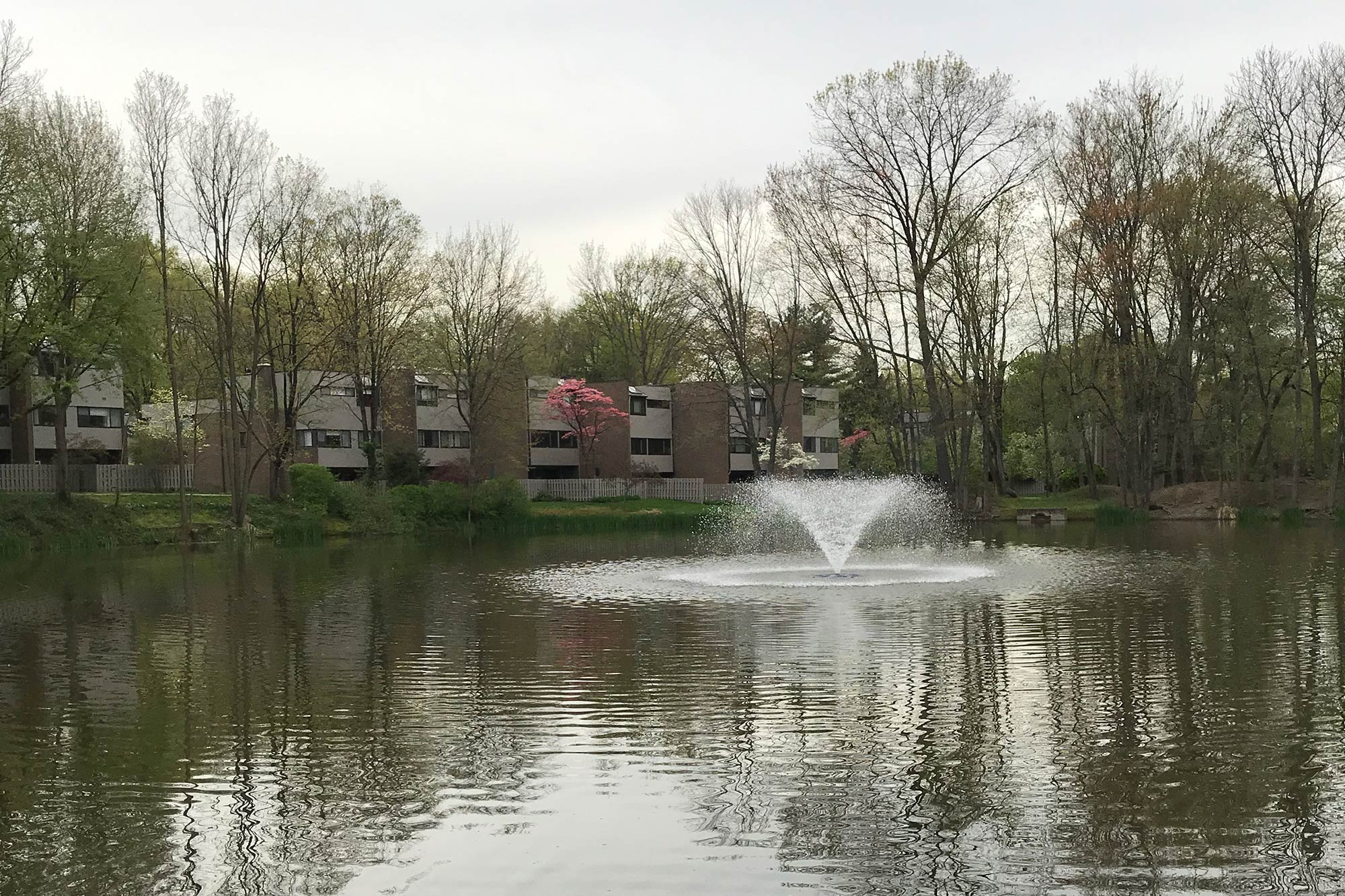 About Washington Pond — Washington Pond Homeowners Association