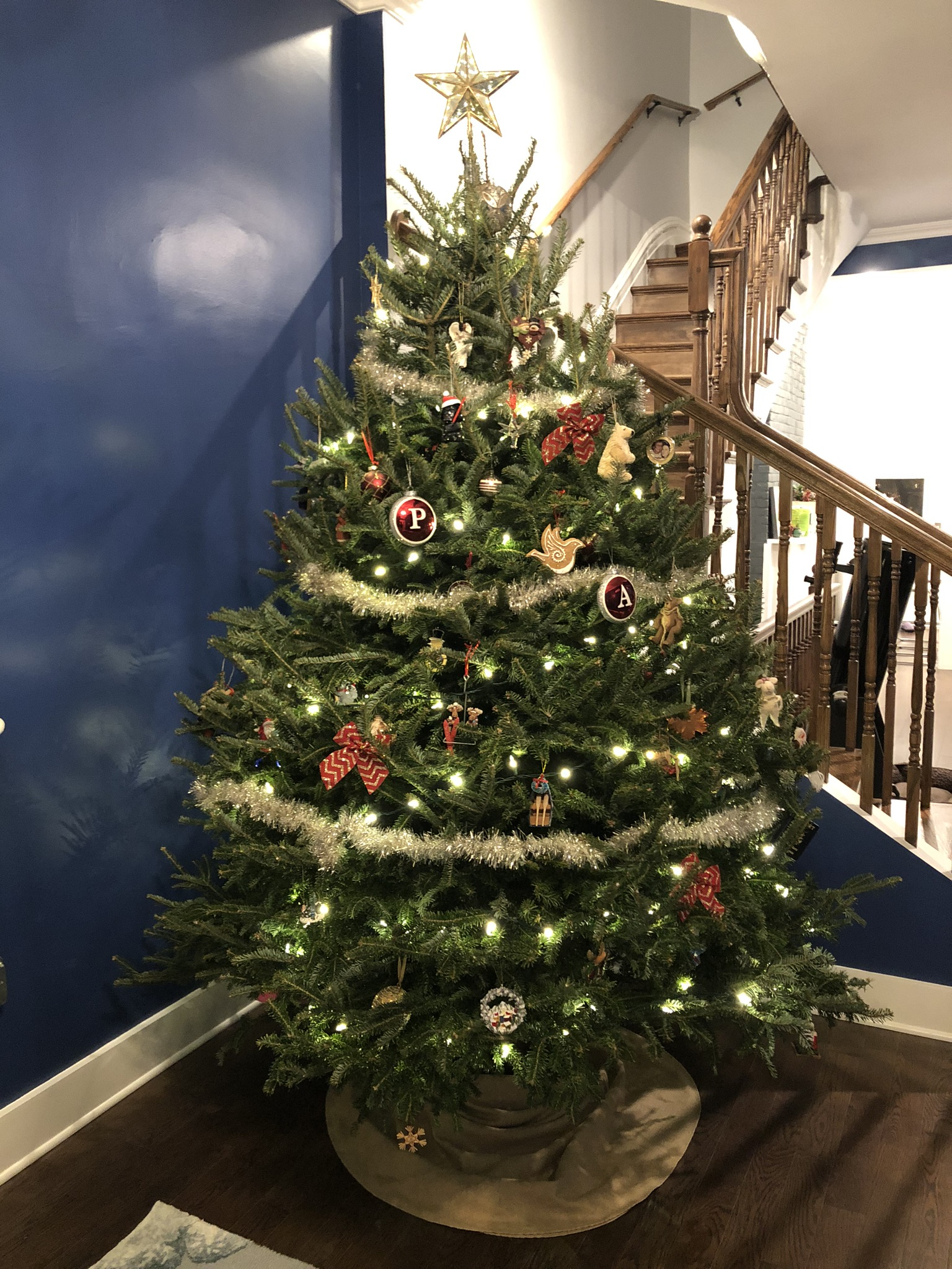 Last year's Christmas tree
