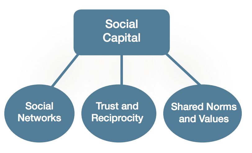FIGURE: THREE DIMENSIONS OF SOCIAL CAPITAL