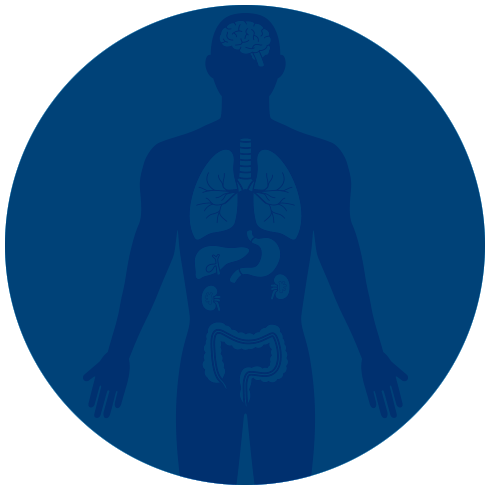 Other HLA Programs - HLA variants are linked to a wide range of autoimmune diseases