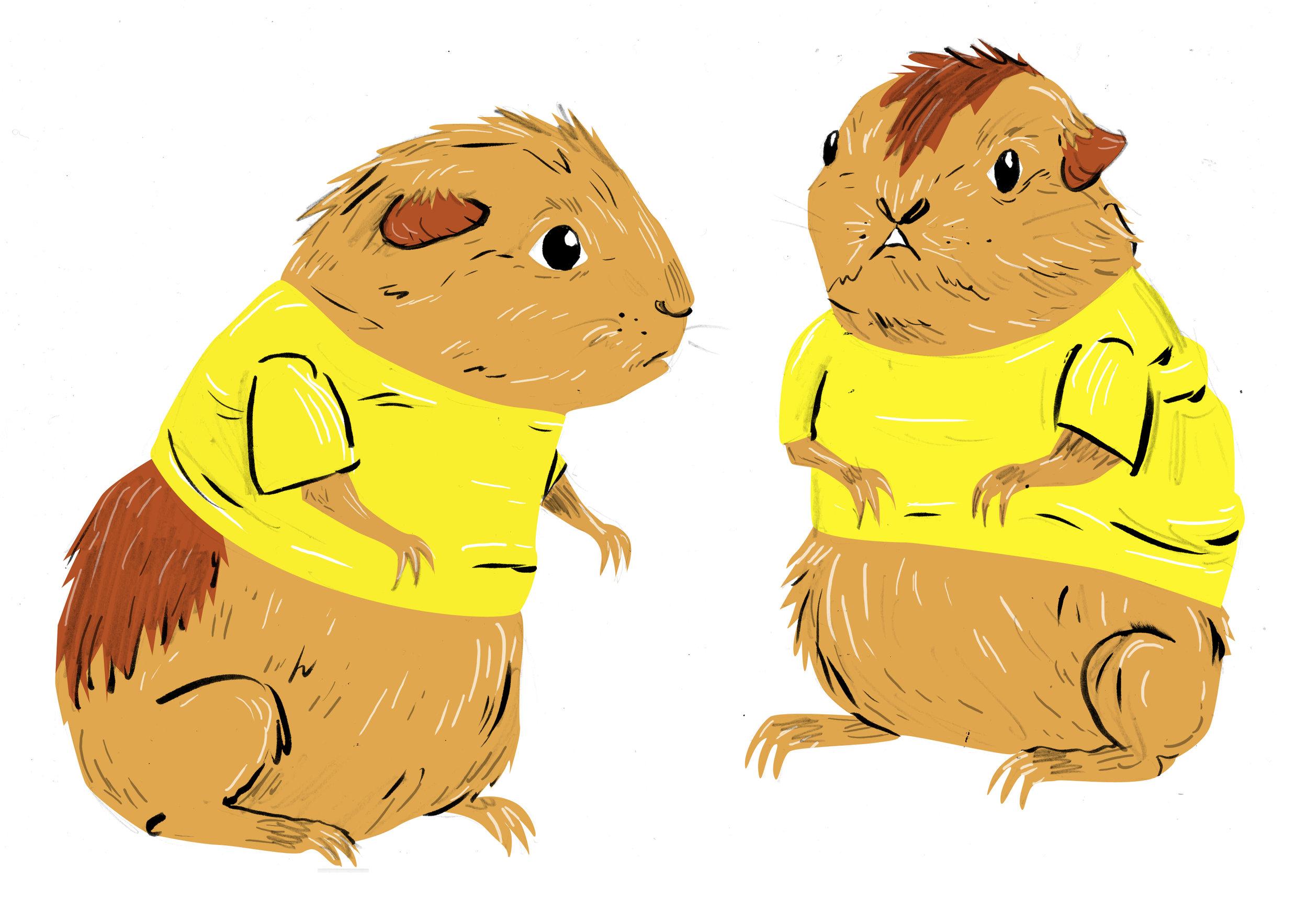 guinea pig shirts.jpg