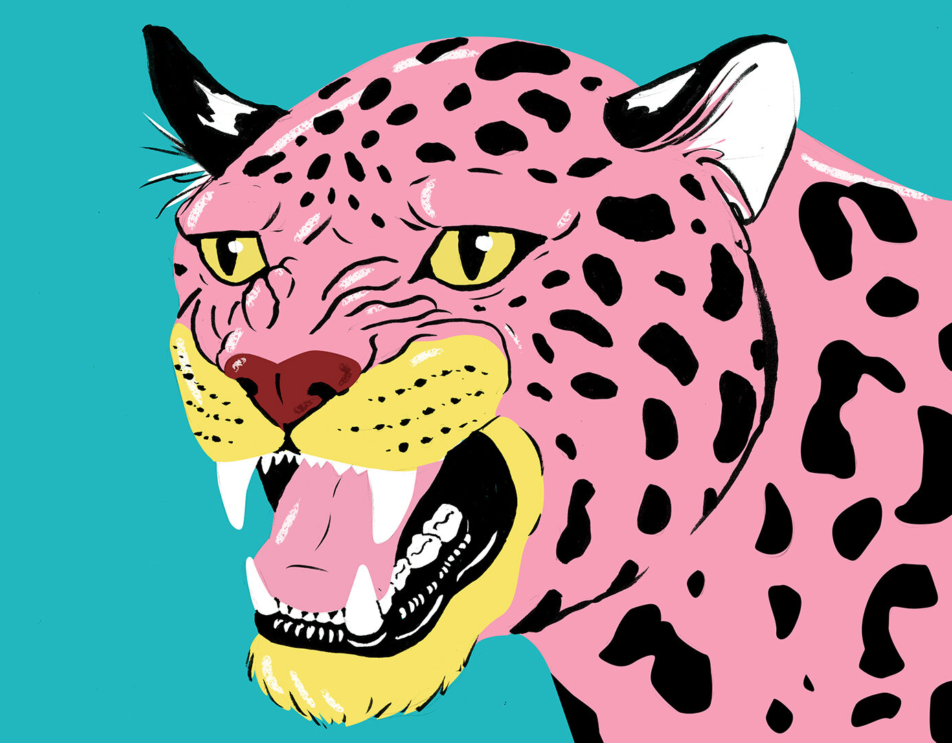jaguar colour2.jpg