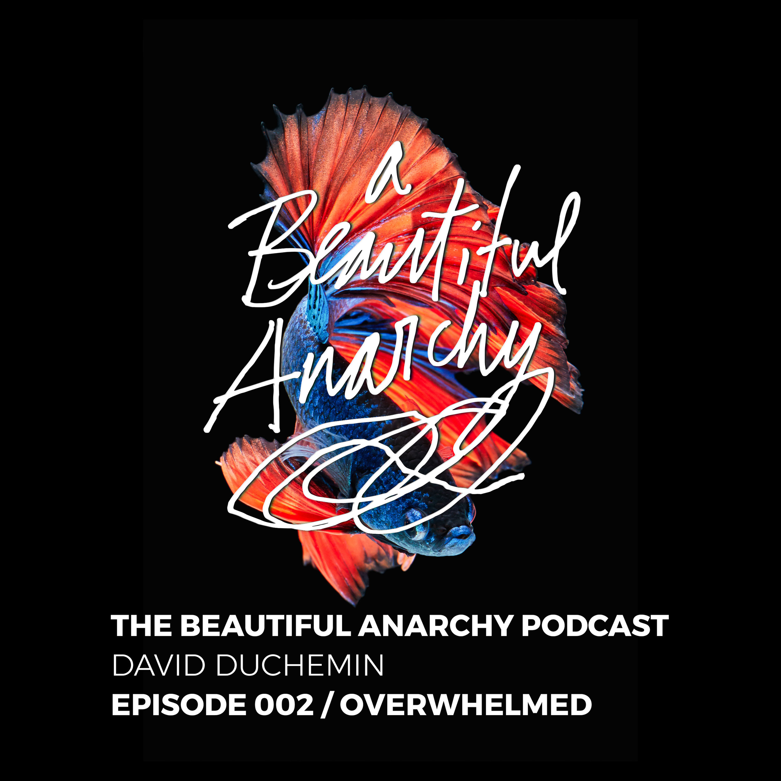 Episode 002:Overwhelmed - I'm feeling overwhelmed these days, like Hokusai's Great Wave keeps hanging above me, threatening to swallow me whole. This episode explores the feelings of being overwhelmed that can paralyze us, and suggests some of my own solutions for dialing it all back, and turning the flood into flow. Let's talk about it.
