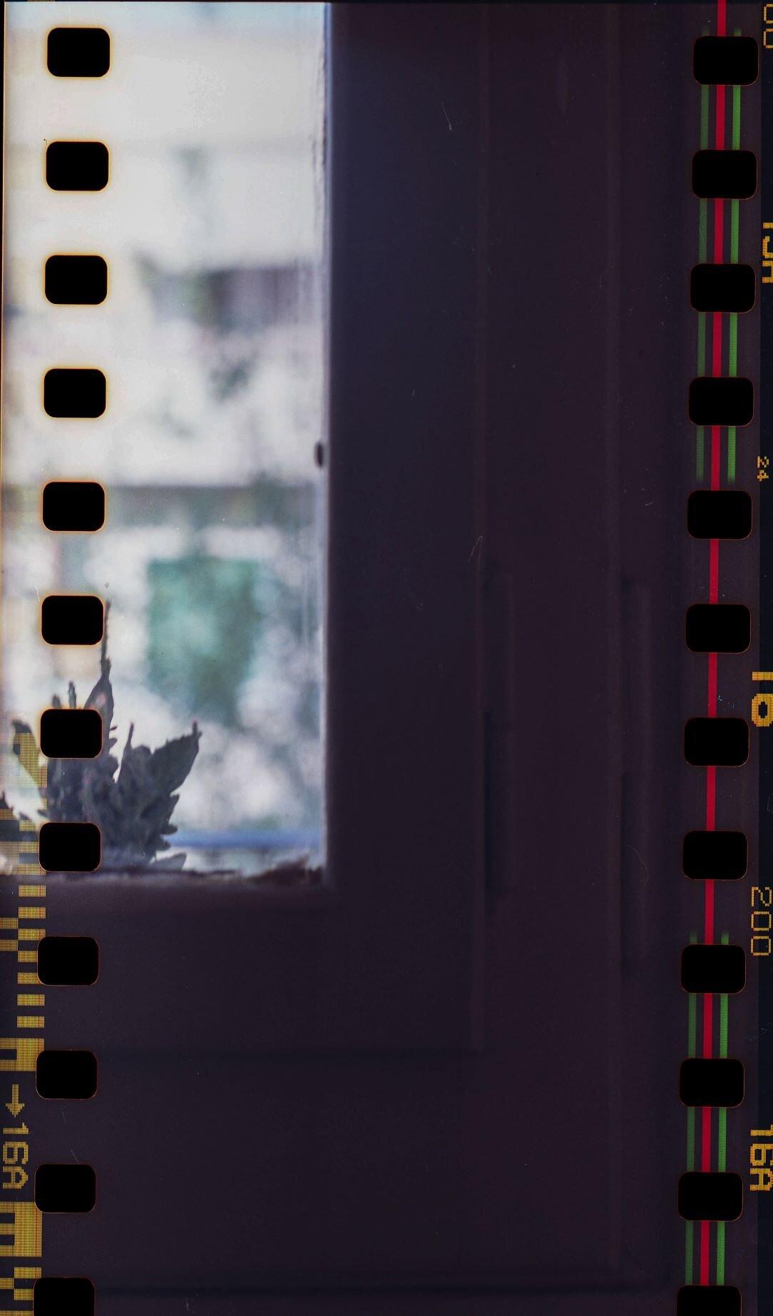 HASS-COL-FUJ-200-35mm-006.jpg
