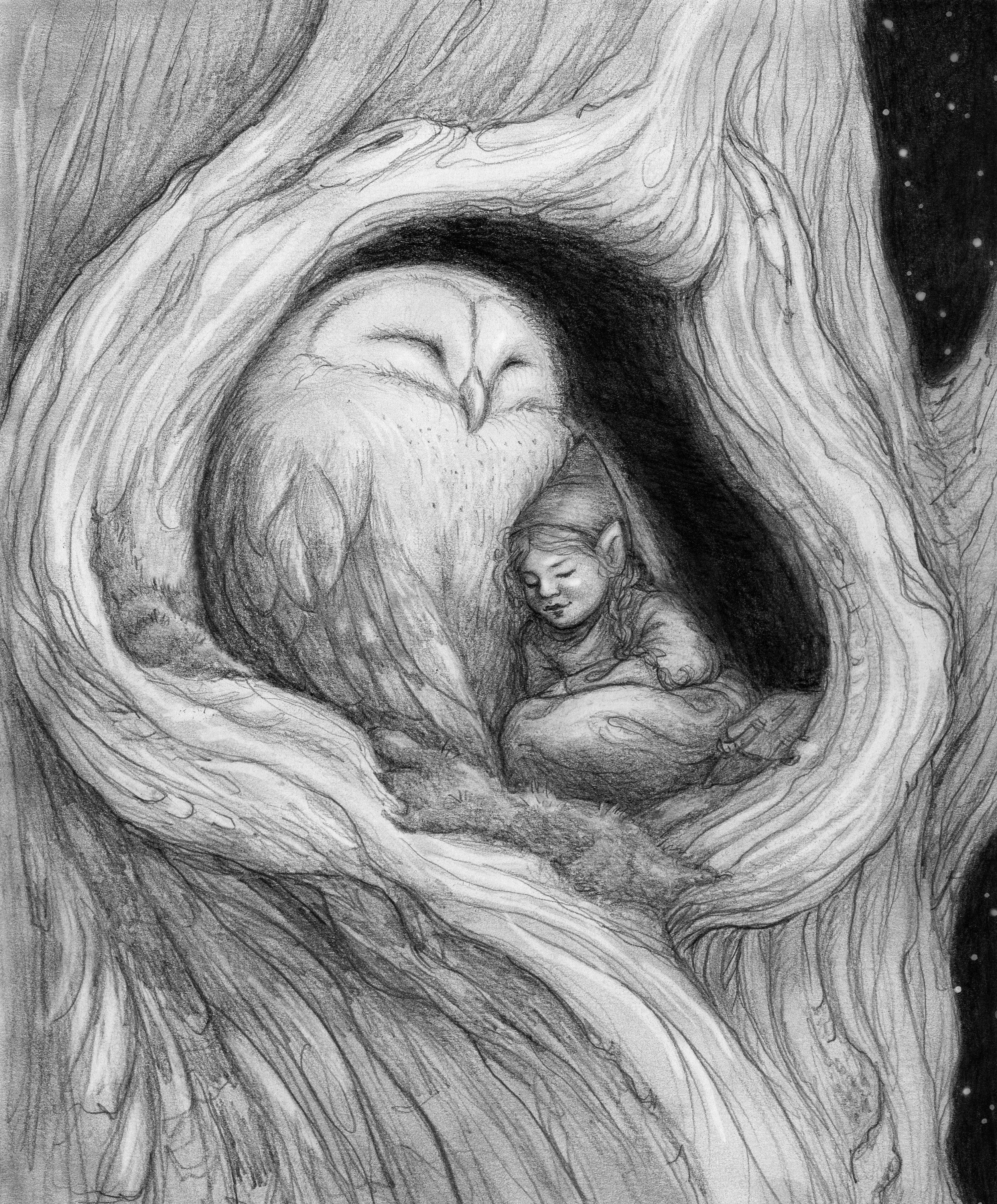 Owl Cuddle.jpg