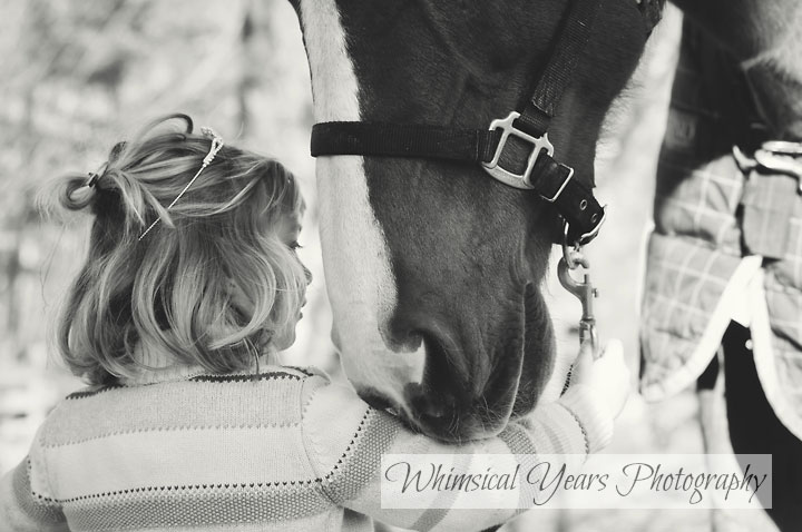 profile image of little girl and horse closeup